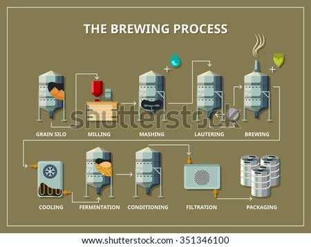 Brewery process infographic - stock photo