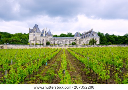 Breze Chateau and vineyard from Loire Valley, France - stock photo