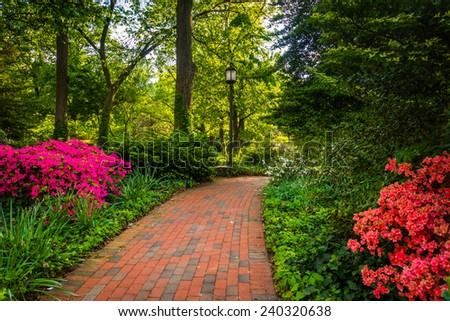 Brick path through a woodland garden at John Hopkins University in Baltimore, Maryland. - stock photo