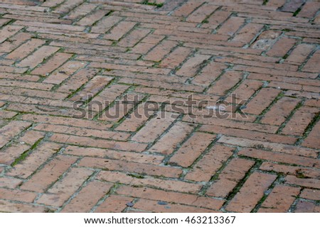 Brick road closeup