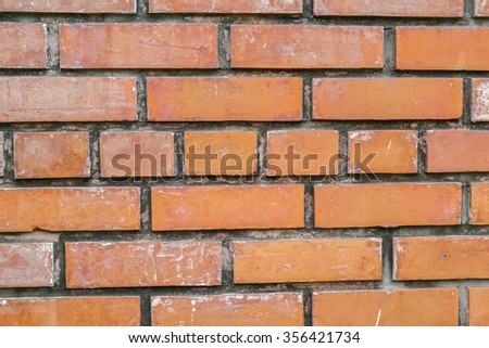 brick texture in the park