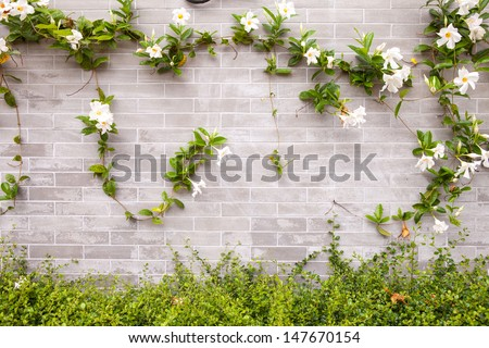 Brick Wall and Flowers - stock photo
