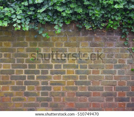Brick wall and tree on top