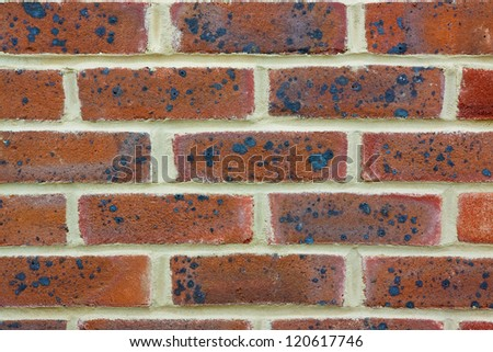 Brick Wall detail texture and background