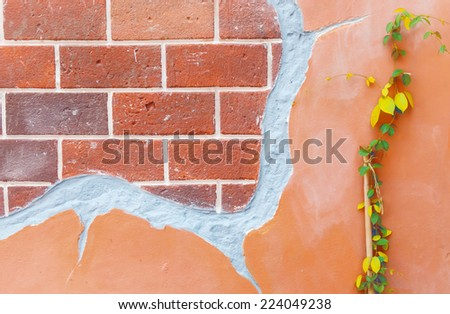 Brick wall grunge with climber background - stock photo
