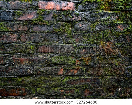 Brick wall with moss background texture - stock photo