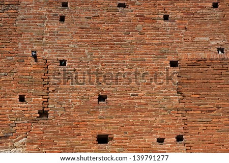 Brick wall with the pigeon's holes