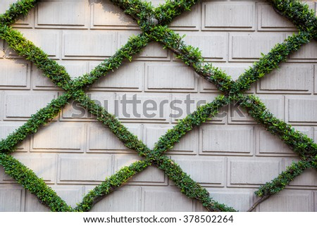 Bricks and plantlife create this x pattern on a living wall in California. - stock photo