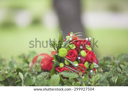 bridal bouquet of red flowers on the green bushes. selective focus - stock photo
