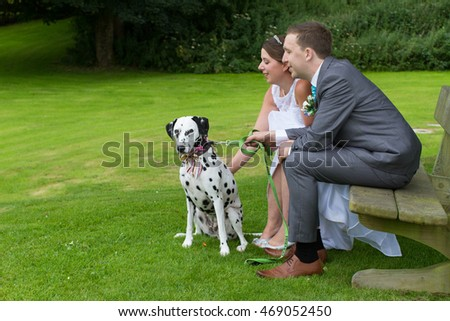 Bride and groom and their dog at their wedding. Dalmatian with his newly wed owners.