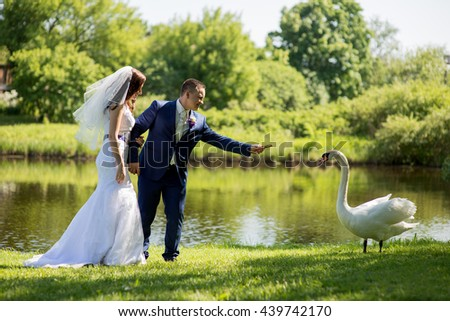 Bride and Groom at wedding Day walking Outdoors on spring nature. Bridal couple, Happy Newlywed woman and man embracing in green park  and fed swan - stock photo