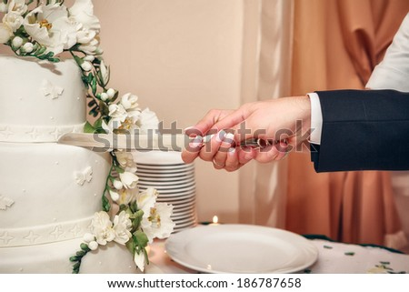 Bride and Groom at Wedding Reception Cutting the Wedding Cake - stock photo
