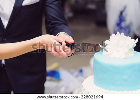 bride and groom holding knife and cutting cake - stock photo