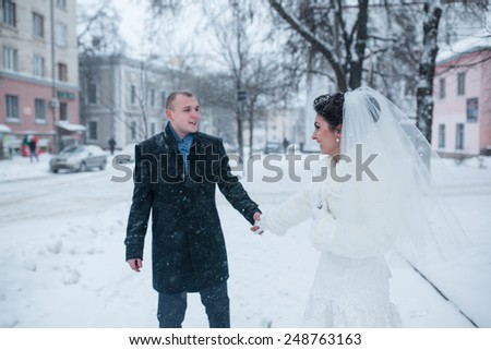 bride and groom in a winter frost with a snowflow