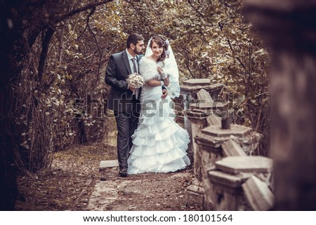 bride and groom  joined hands to the sunset  - stock photo