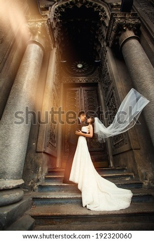 Bride and groom on the background of beautiful architecture. Beautiful old building. Arch. Wedding.