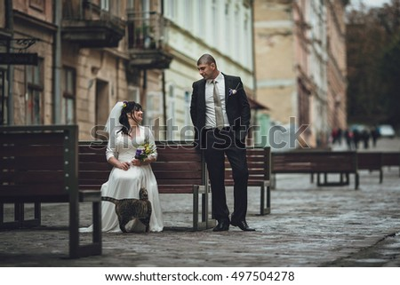 bride   and groom sitting on a bench with a cat