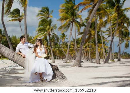 bride and groom sitting on a palm tree on a tropical beach - stock photo