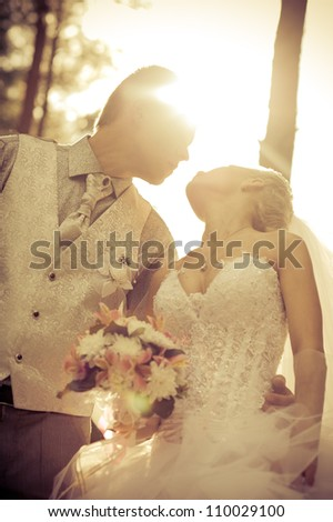 bride and groom. wedding - stock photo