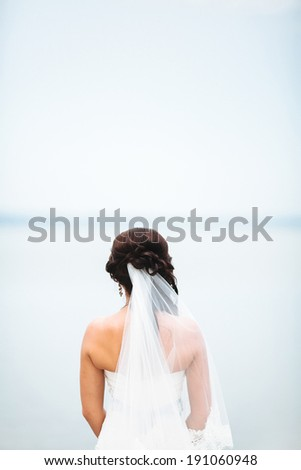 bride back - stock photo