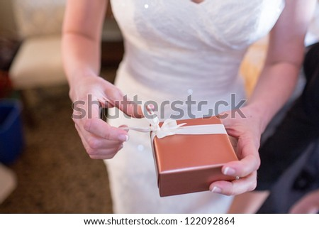Bride Holding Gift - stock photo