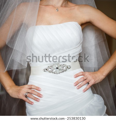 bride in luxury decorated dress with arms akimbo - stock photo