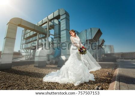 Bride Luxury Wedding Dress Near Metallic Stock Photo (Royalty Free ...