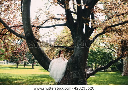 Bride sitting on a tree