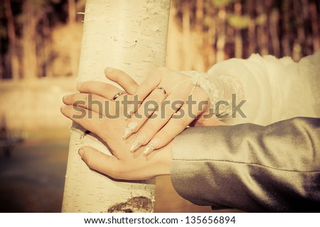 brides and grooms hands. wedding