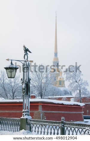 Bridge and Peter and Paul Fortress in St. Petersburg, Russia