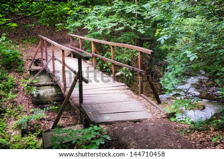 Bridge in a deep forest / This small bridge was photographed in a place named Obanya. It is a nature reserve in Hungary, the county of Baranya, Mecsek mountain.