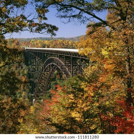 Bridge in autumn forest - stock photo