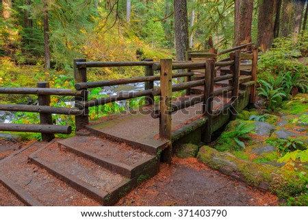 Bridge in Sol Duc rainforest at Olympic National Park, Oregon Coast