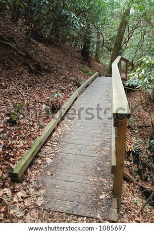 bridge in the woods - stock photo