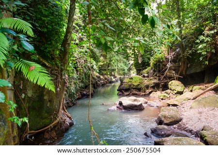Bridge over river in the balinese jungle, Indonesia - stock photo