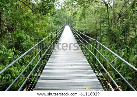 Bridge over the jungle in Costa Rica - stock photo
