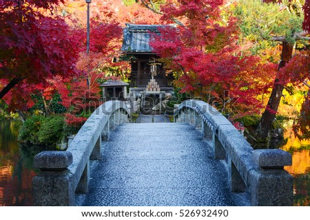 Bridge to a pond island with a small Japanese prayer shrine and red fall maple trees