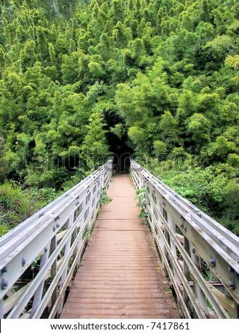 bridge to bamboo abyss - seven sacred pools np - hana, maui, hawaii - stock photo