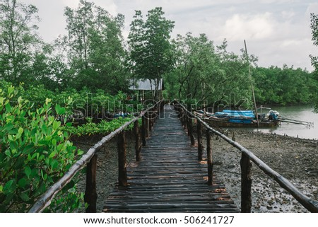 Bridge to the wooden boat at mangrove forest