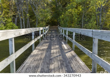 Bridge To Woods