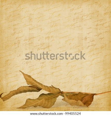 Bright autumn leaves on the abstract background with handwrite text - stock photo