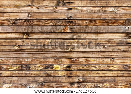 Bright background with wooden texture for any of your design  - stock photo