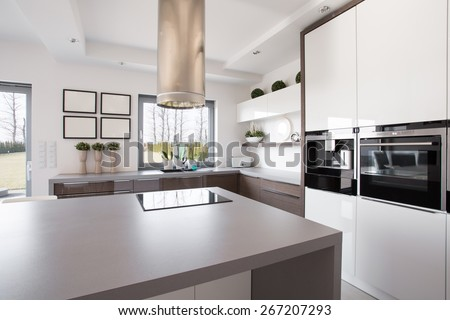 Bright beauty kitchen interior in modern design