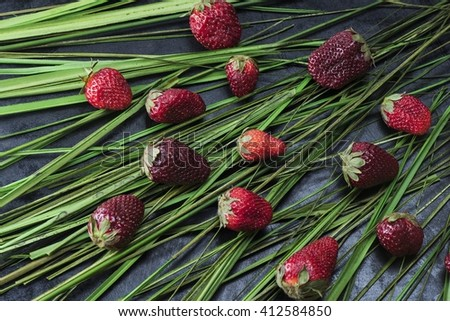 Bright berry, laid out on the grass - stock photo