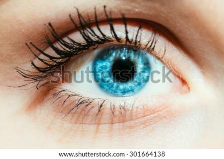 Bright Blue Eye Close Up Female Face - stock photo