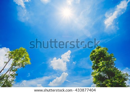 Bright blue sky and white clouds, nature green tree, the sun shines in the sky. Summer heavens cloudy outdoor wallpaper. - stock photo