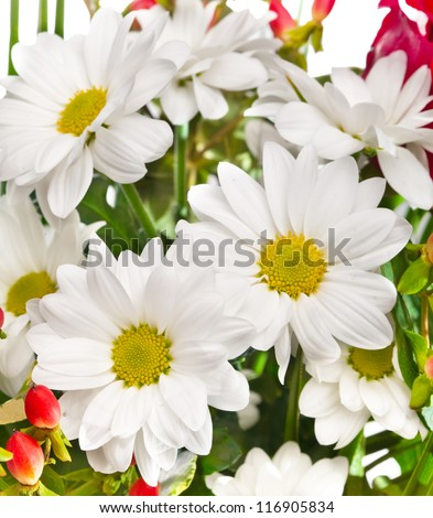 Bright bouquet with chamomiles