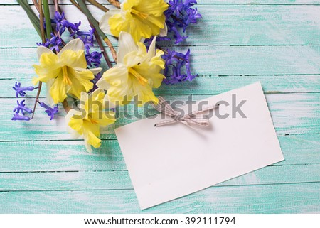 Bright colorful yellow and blue spring flowers and empty tag for text  on turquoise wooden planks. Selective focus. - stock photo