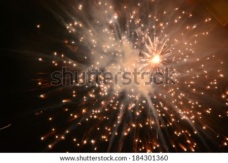 Bright firework explosion in the night sky
