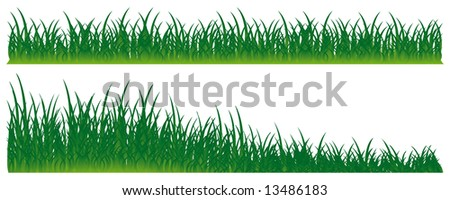Bright grass of a beautiful shade. An illustration. Isolation on white.